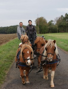 Nicolas, mes poneys et moi ! Octobre 2012