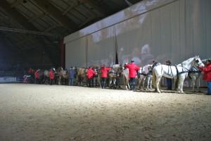 Ordre et méthode pour aligner les 14 chevaux sur scène