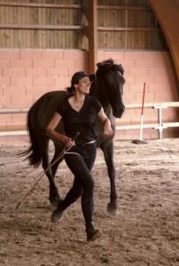 cheval courant aux coté d'une jeune femme