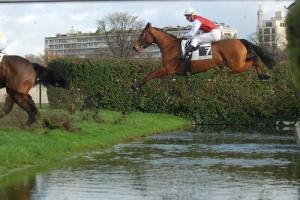 chevaux franchissant la rivière d'Auteuil