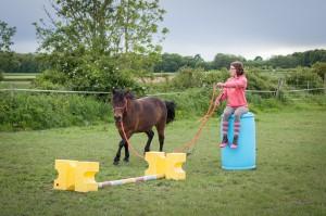 saut à la longe avec poney