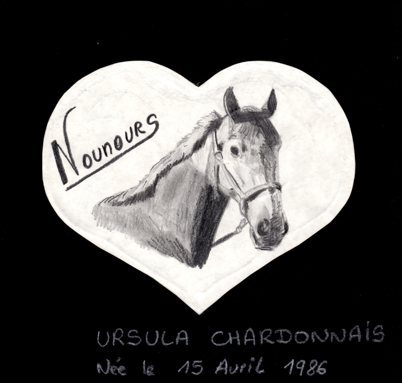 Tous les articles de cheval facile part 12 - Dessin cheval facile faire ...