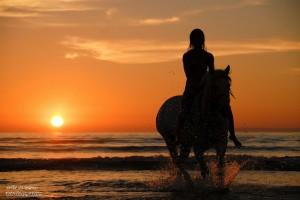 cavalière à la mer au soleil couchant
