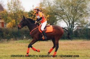 cheval au galop habillé de orange