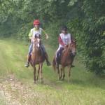 cavaliers et chevaux heureux