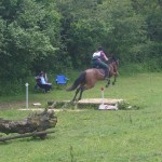 cheval qui saute un fossé en TREC