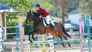 CSO de concours complet d'équitation