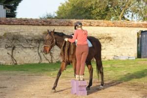 L'équitation autrement