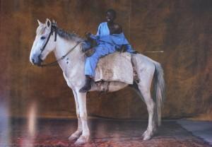 """image extraite du livre, représentant Pourou, cheval africain de 7ans dont le nom veut dire """"fleur de tabac"""" (soit gris bleuté)"""