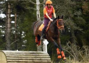 cheval et cavalière tout vêtus de orange.