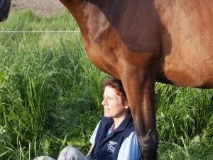 assise aux pieds de mon cheval