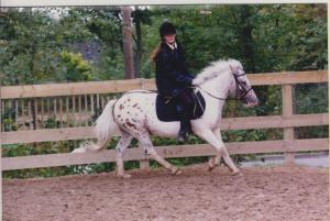 jeune fille sur un poney tacheté