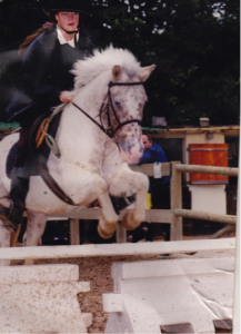 poney sautant un obstacle