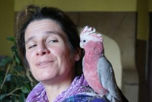 perroquet sur l'épaule