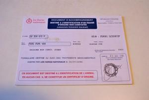 """Livret d'immatriculation d'un poney d'origines non constatées (= """"sans papiers"""")"""