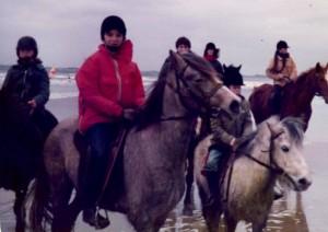 promenade en bord de mer avec poneys et chevaux.