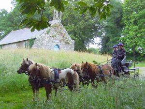 Parcours d'orientation en attelage avec les 4 poneys ... en Bretagne !!