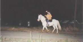 épreuve équestre nocturne, avec Gwen Ha Du, un super cheval !
